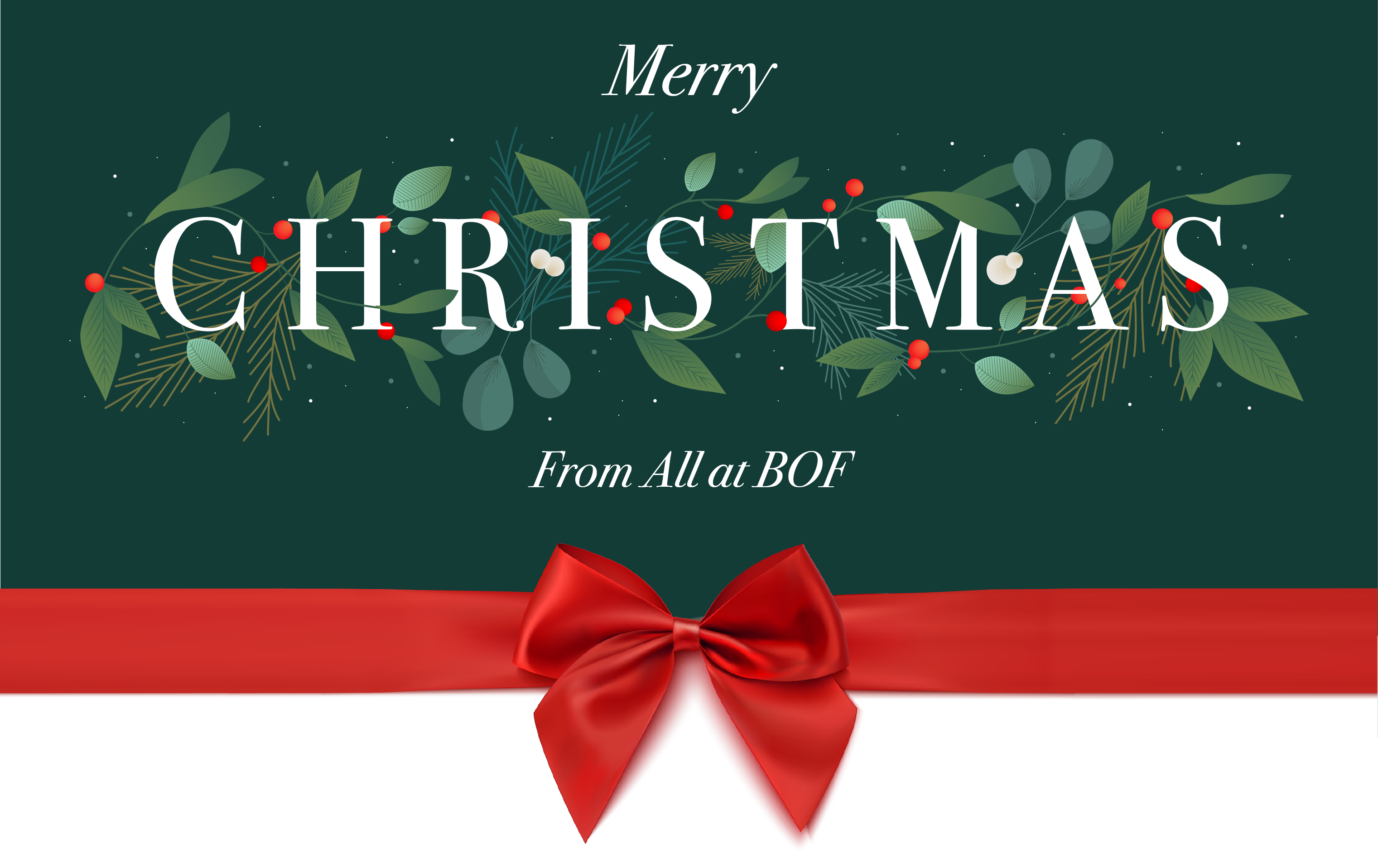 Merry Christmas & Happy New Year from all at BOF